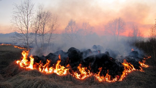 Air Pollution from Stubble Burning Continue to Plague Northern India