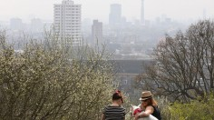 Air Pollution Linked to a Girl's Death