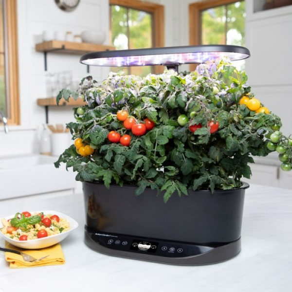 Investing in an Aerogarden: important considerations to make