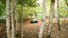 Travel By Car in the Forest - What to Do in an Emergency?