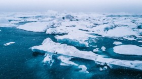 Arctic's in Danger! 5 Infographics Showing the Alarming State of the Arctic