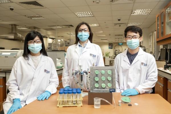 NUS researchers