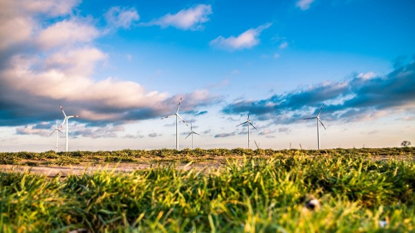 5 Pieces of Green Tech Businesses Need Immediately