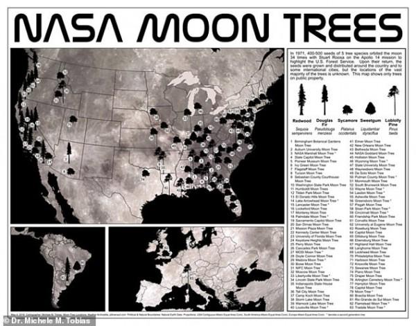 Mapa de árboles lunares