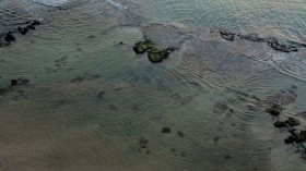 Cleanup Effort After Suspected Oil Spill Off Israel's Coast