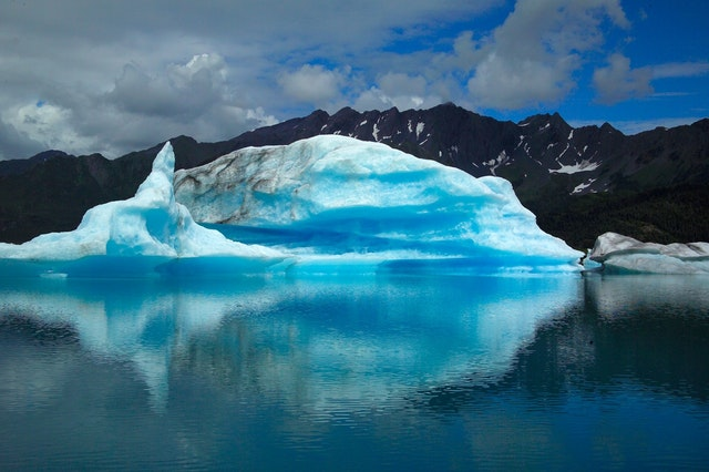 Geologists: Millions of plant fossils discovered deep beneath the Greenland ice sheet