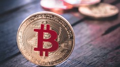 Want to Earn Money in the Digital Currency Market? Learn through this Article