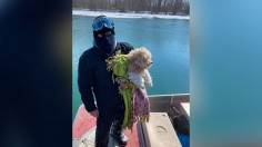 Meet Miracle: Abandoned Dog Saved From Icy River Gets Adopted by Rescuer 4 Days Later!