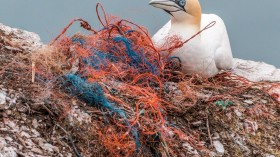Microplastics Are Now Spiraling Around The Globe in The Air We Breathe