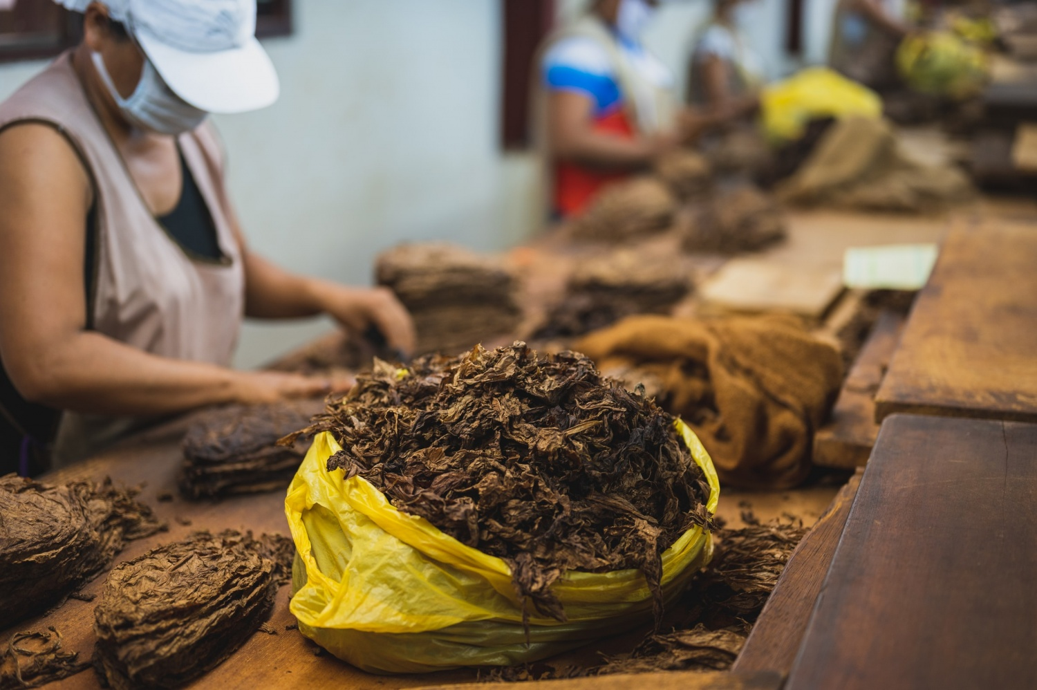 what can tobacco be used for