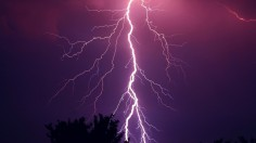 Thunderstorm Purple