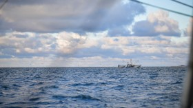 Shrimp Season Begins On North Sea Coast, Fishermen Hope For Return To Normalcy