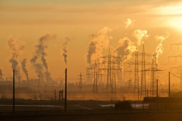 How Can Business Leaders Tackle Climate Change?