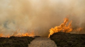 Moorland Wildfire In North Wales' Clwydian Range