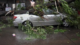 Effect of severe storm
