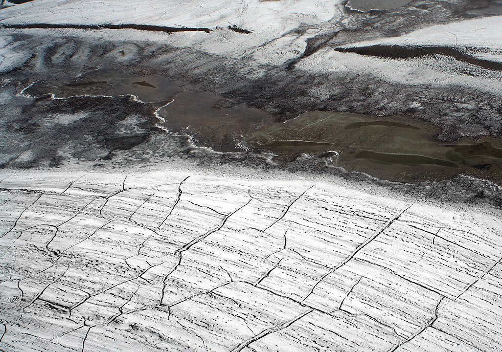 Thawed Ice Within Russian Permafrost Unravels Ancient Lives Buried Deep Beneath the Snow!