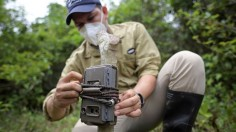 Ricardo Ortiz, member of the Panthera organization for the preservation of big cats, places a trap's camera at La Aurora natural reserve
