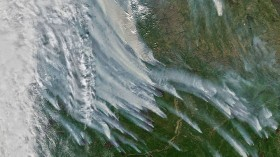 Siberia fire smoke from space