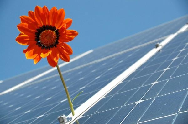 How To Start Using Solar Power In Your Garden