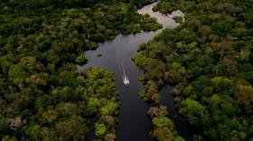 Jurura river Brazilian Amazon Forest