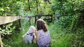 The Unlikely Pair of Pups & Produce: 6 Tips for Establishing a Dog-Friendly Garden