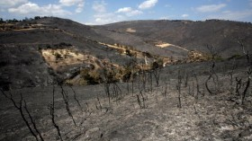 Wildfire Burn Scar
