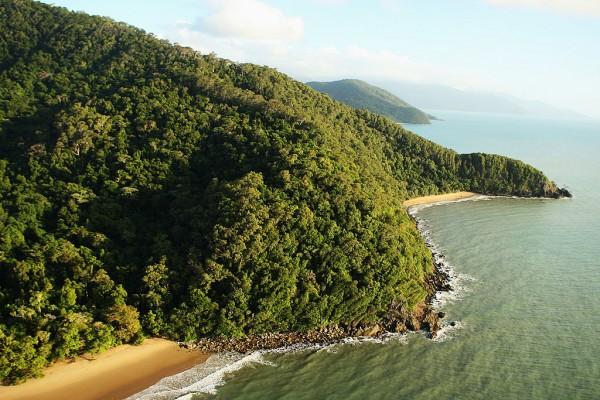 Scientists Monitor Australian Climate Change In Cape Tribulation