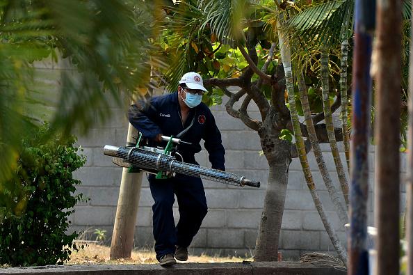 A member of the Health's Secretariat Vector Controls Unit fumigates against mosquitoes