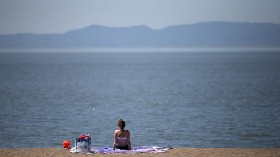 Bay Area Experiences Record Temperatures In First Heat Wave Of The Year