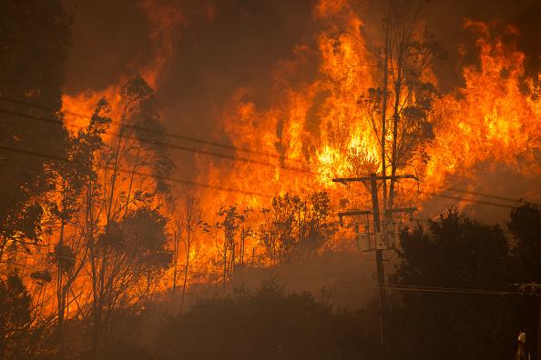 Alisal Fire burning near power lines