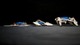 self-folding robot