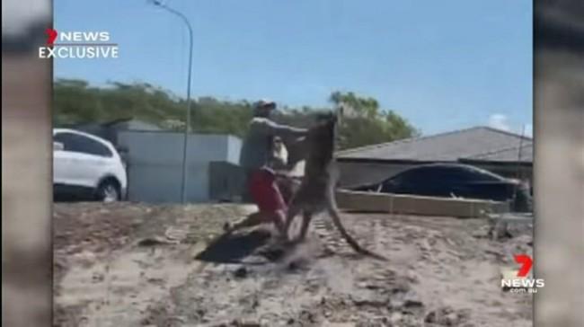 Mitchell Robinson vs Kangaroo