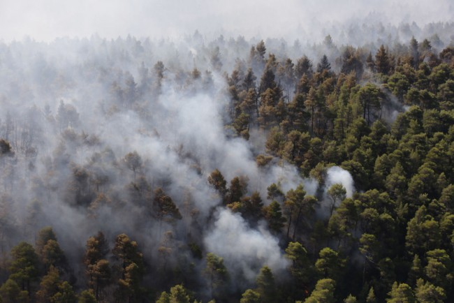 Villages Evacuated As Wildfire Sweeps Greek Island Of Evia